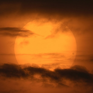 venustransit_cortner_big.jpg